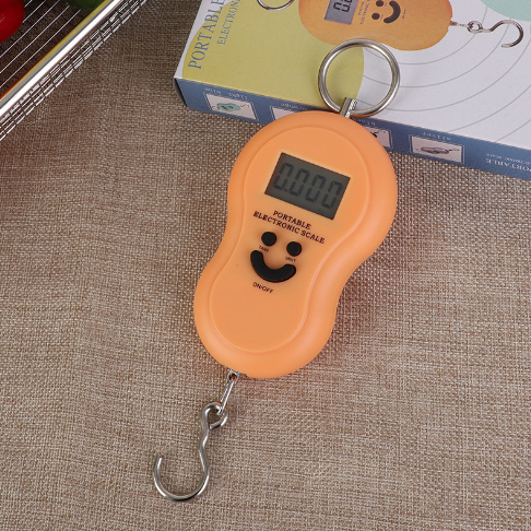 <strong>Mini Fishing Weighing Hanging Weighing Electronic Scale K-1</strong>